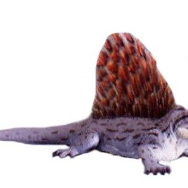Dino Tales Series 1 #013 Dimetrodon