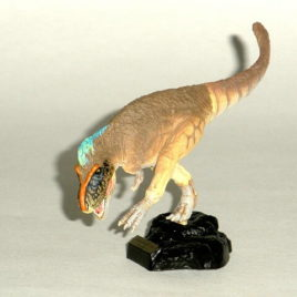 Dino Kingdom Expo Japan 2012 Tyrannosaurus Rex Capsule Figure