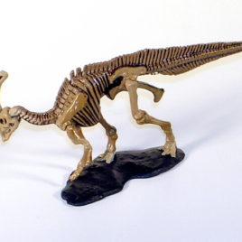 Dino Tales Series 1 #008 Parasaurolophus Skeleton