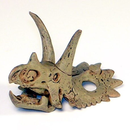 Dinotales Series 7 Anchiceratops Skull A