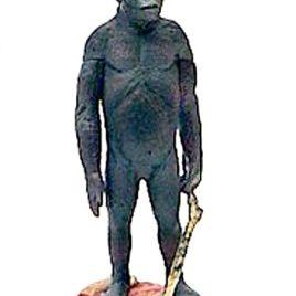 2 #040 Australopithecus Boisei Hard to Find