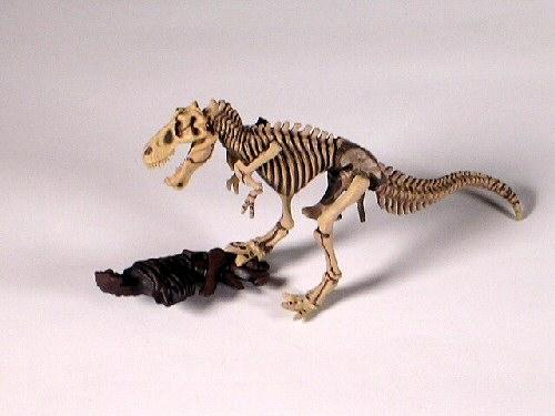 Dinotales Series 4 #081 Tarbosaurus Skeleton RARE