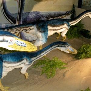 Dino Kingdom Expo Japan 2012 Stegosaurus Stenops Capsule Toy