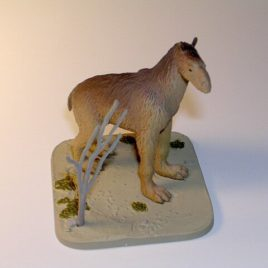 Mystery Museum series number 4 Nandi Bear